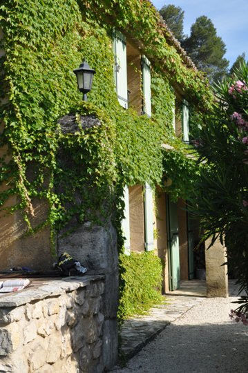 beautiful Mas for holiday rental, La Bergerie at Moulin de la Roque, covered with wine
