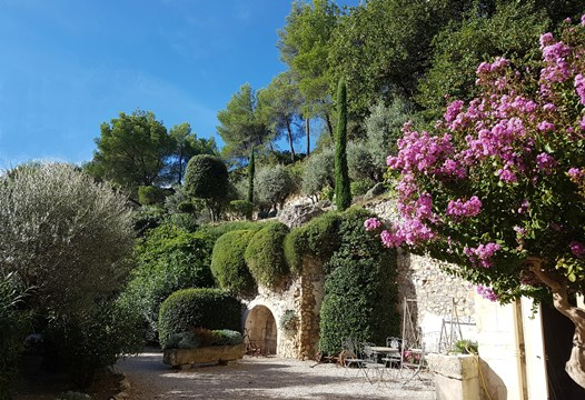 Villa Mas des Oliviers, entourée d'oliviers centenaire, Lauriers Roses, lavande et autres plantes provençale                  at Moulin de la Roque, Noves, Avignon and Saint-Remy-de-Provence  just 15  to 20 minutes away from your door