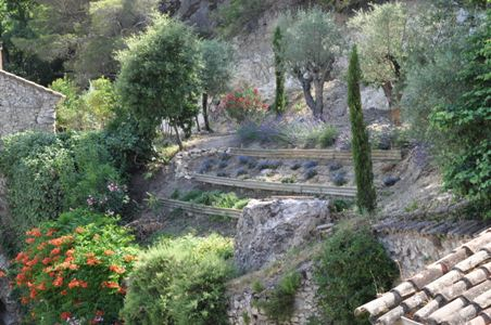 Moulin de la Roque, Noves, Mas des Oliviers, view from the Master bedroom - holliday rental